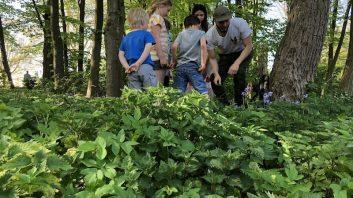 activiteiten kinderopvang bso zomervakantie thema natuur